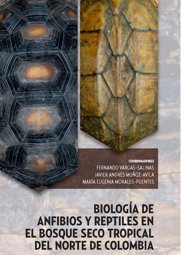 Book Chapter on habitat restoration for the endangered Dahl's Toad-headed Turtle in northern Colombia